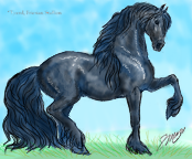 friesian stallion2